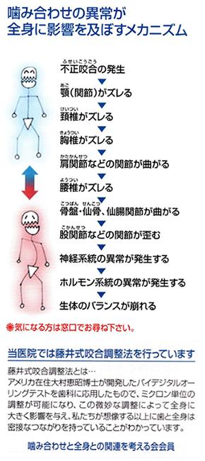 口腔アレルギー症候群|一般社団法人日本 ...